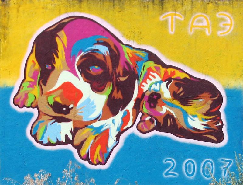 TA3, 2007 – Puppies