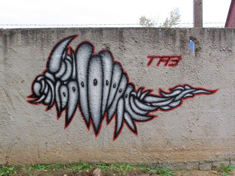 TA3, 2013 – Armadillish